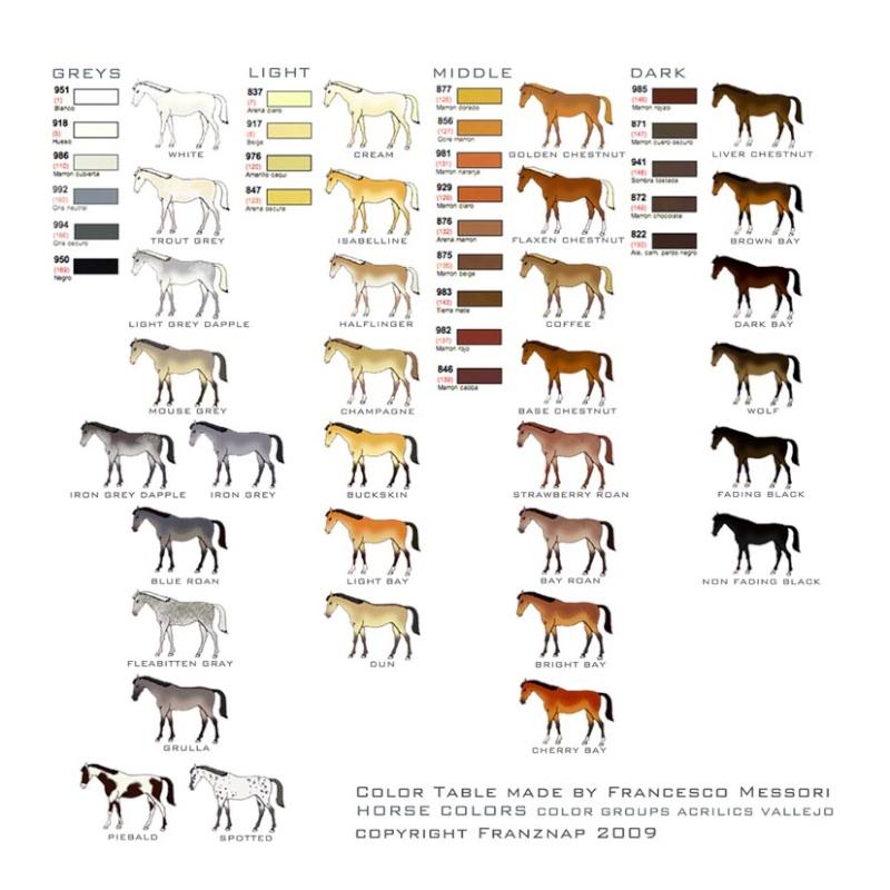 Les robes des chevaux par Eugène lelièpvre  Horse-10