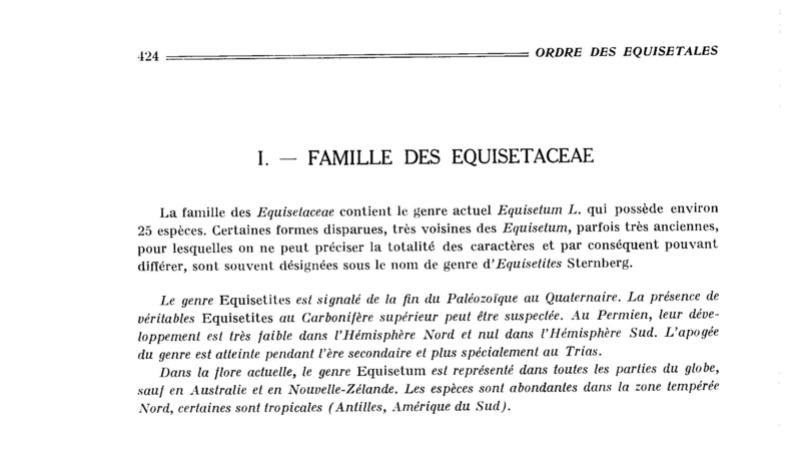 Flore Carbonifère des Alpes Françaises part 2 P424_010
