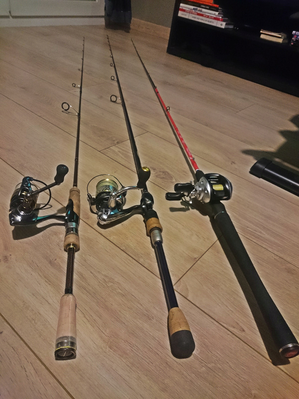 Canne Spinning et Casting Peche110