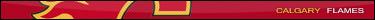 nhls-retro en HTML Cgy1010