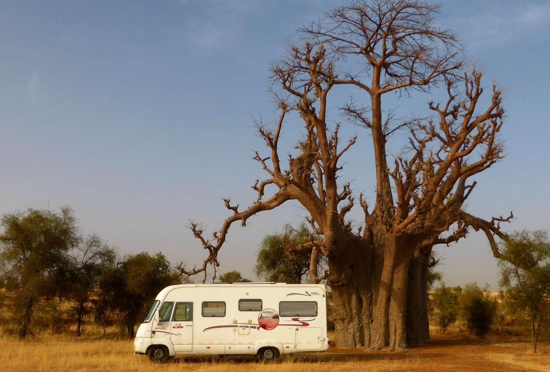 [Jeux] Enigme : Le rouge vif et le beige en mauritanie  - Page 2 P1080713