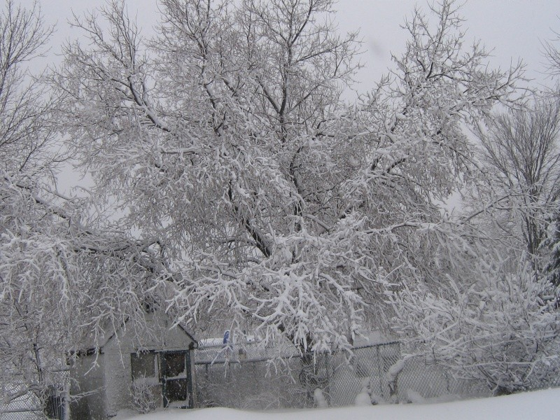 Tempête du 18 Décembre 2012 02210