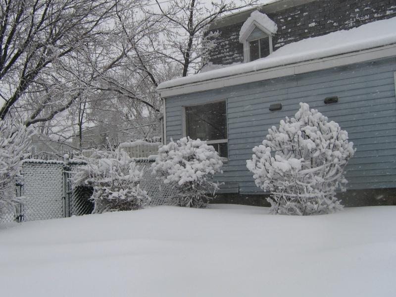 Tempête du 18 Décembre 2012 02310