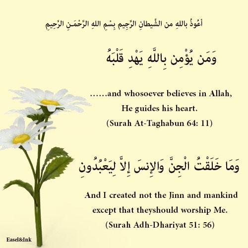 Gems Of The Heart - Shaikh Ibrahim Zidan 08110