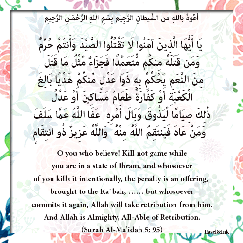 Kill not game while you are in a state of Ihram (Surah Al-Ma'idah 5: 95) 4210