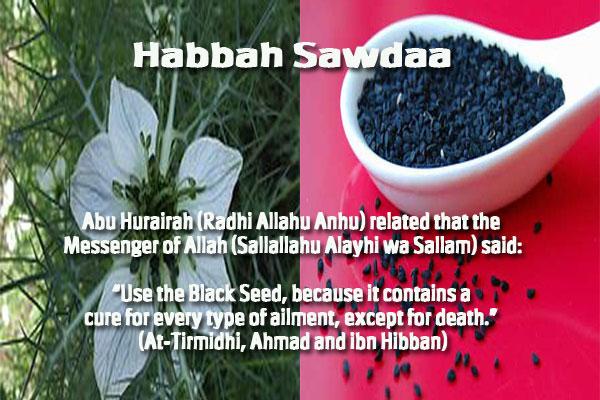 Healing with the Medicine of the Prophet (Sallallahu Alayhi wa Sallam) –Ibn Qayyim Habbah10