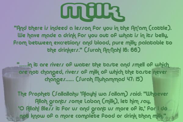 Healing with the Medicine of the Prophet (Sallallahu Alayhi wa Sallam) –Ibn Qayyim Milk10