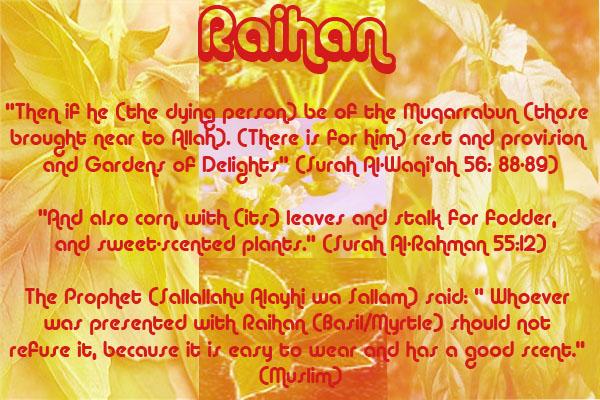 Healing with the Medicine of the Prophet (Sallallahu Alayhi wa Sallam) –Ibn Qayyim Raihan10