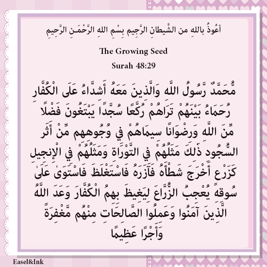 The Growing Seed (Surah 48:29) S48a2910