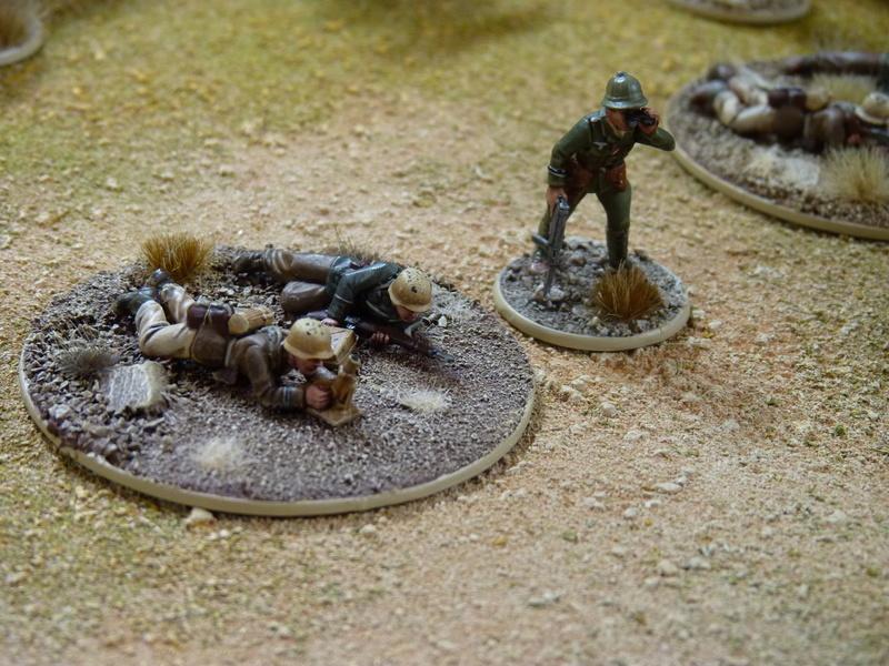 Projet Afrikakorps - Page 3 P1060425