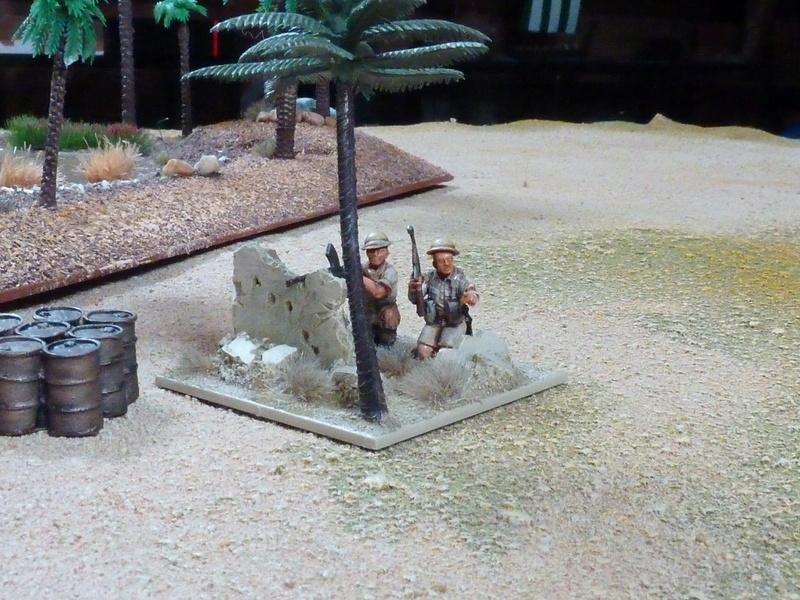 Projet Afrikakorps - Page 3 P1060545