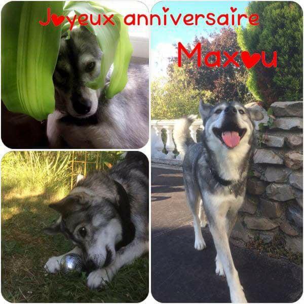 NOUVELLES DE MAXWELL 22046810