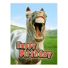 Joyeux anniversaire Hihan Cheval10