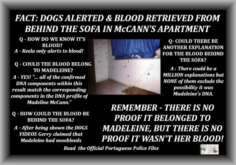 GRAPHICS Dogs and DNA Sofa_b10
