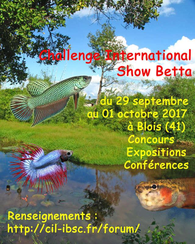 Challenge International 2017 Affich10