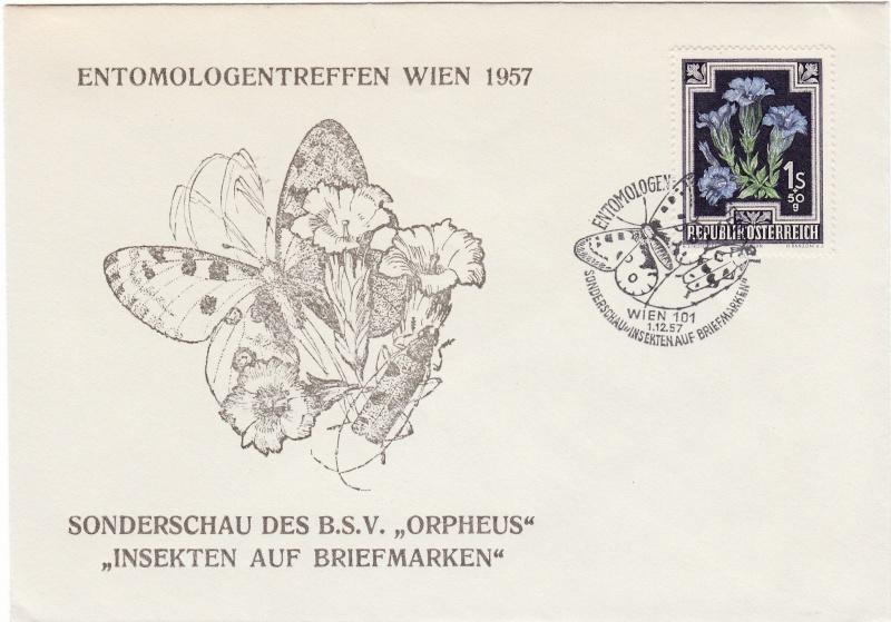 Schmetterlinge Img17