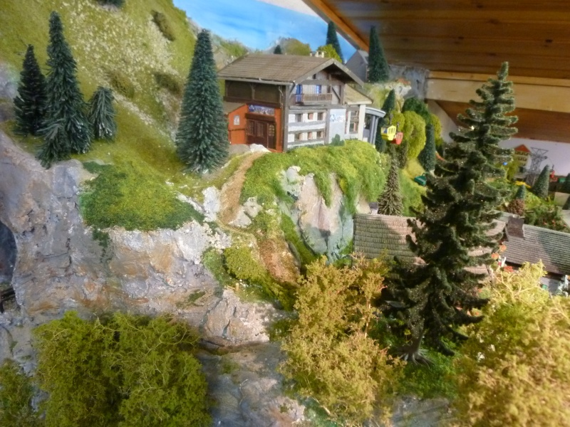 rénovation du décor de la montagne P1050610