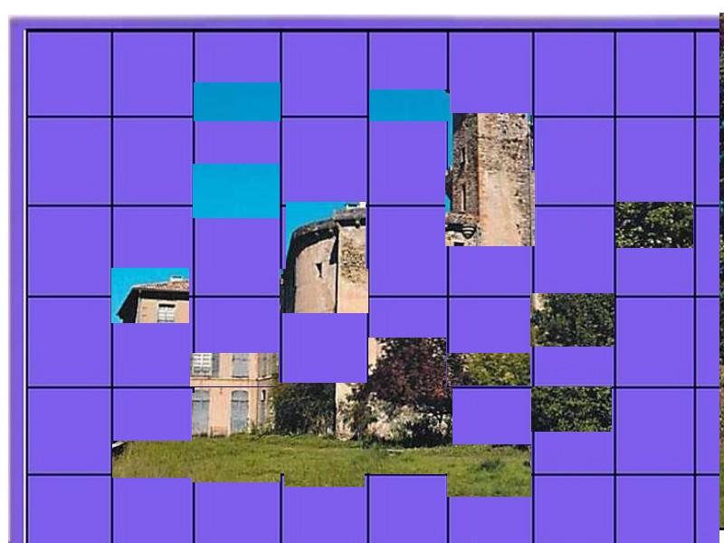 un château - ajonc- 2 août bravo snoopie Chytea13
