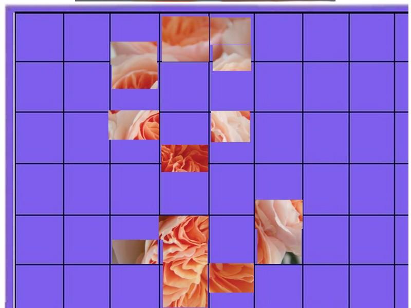 une  fleur  à trouver  - ajonc - 7 juin Bravo Martine Sans_124