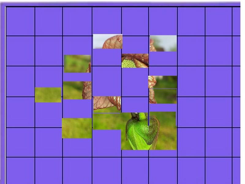 un arbre- ajonc - 2 novembre bravo Martine  Un_arb15