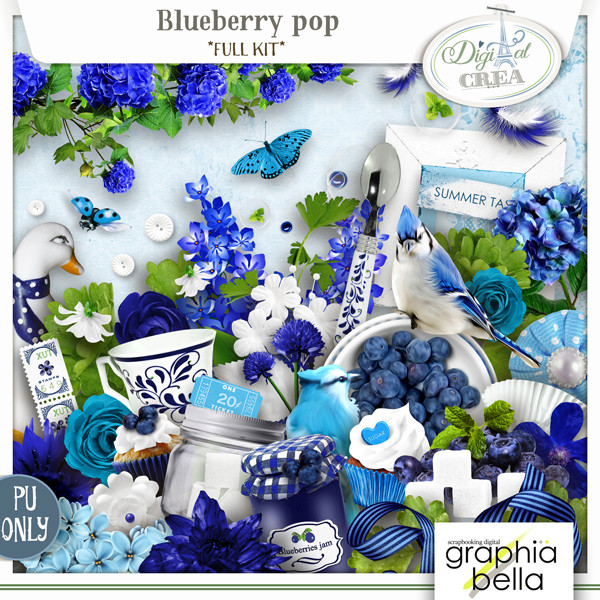 Blueberry pop Collection par Graphia Bella Gbe_bl23