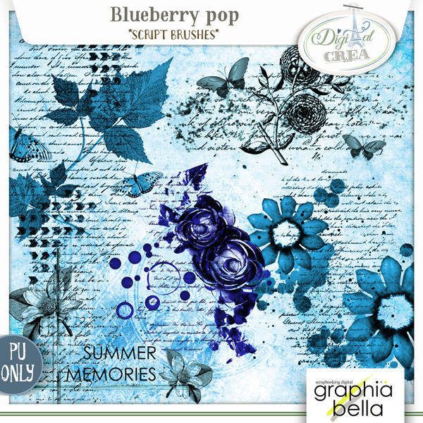 Blueberry pop Collection par Graphia Bella Gbe_bl29