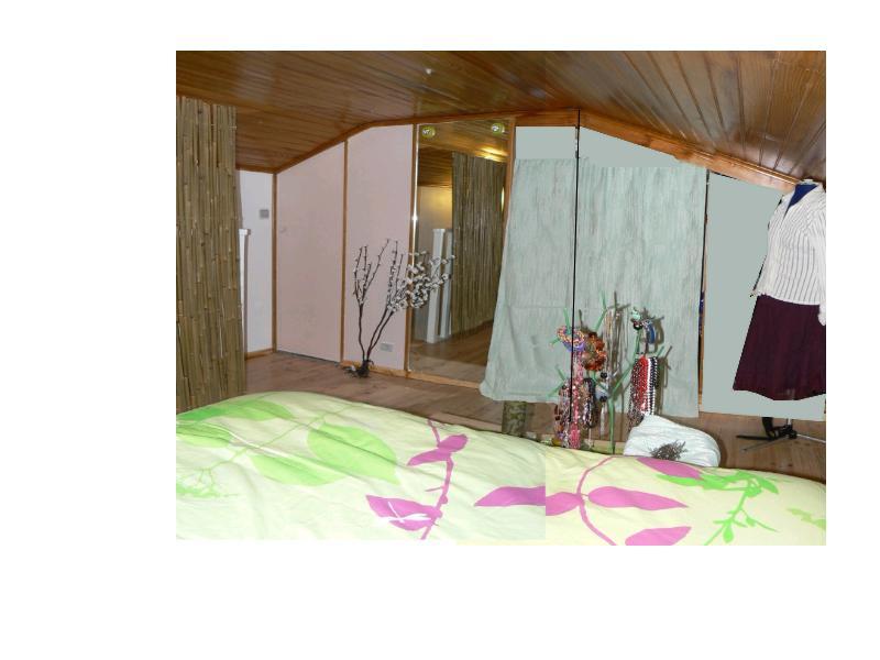 Une chambre mansardée comme un jardin (photo p.1 et 7) Mellie10