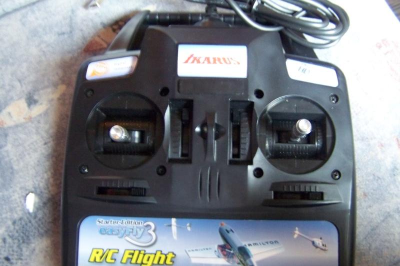 [SIMU R/C] Easyfly 3 d'IKARUS 100_5711