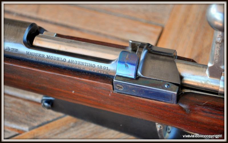 Fusil Argentin 1891 Dsc_0330