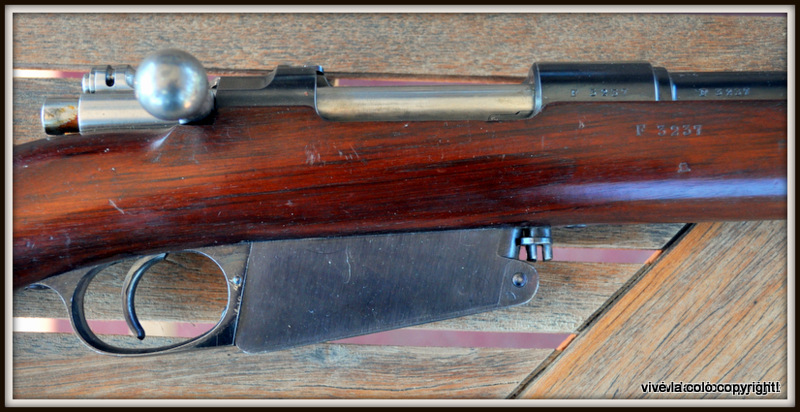 Fusil Argentin 1891 Dsc_0333