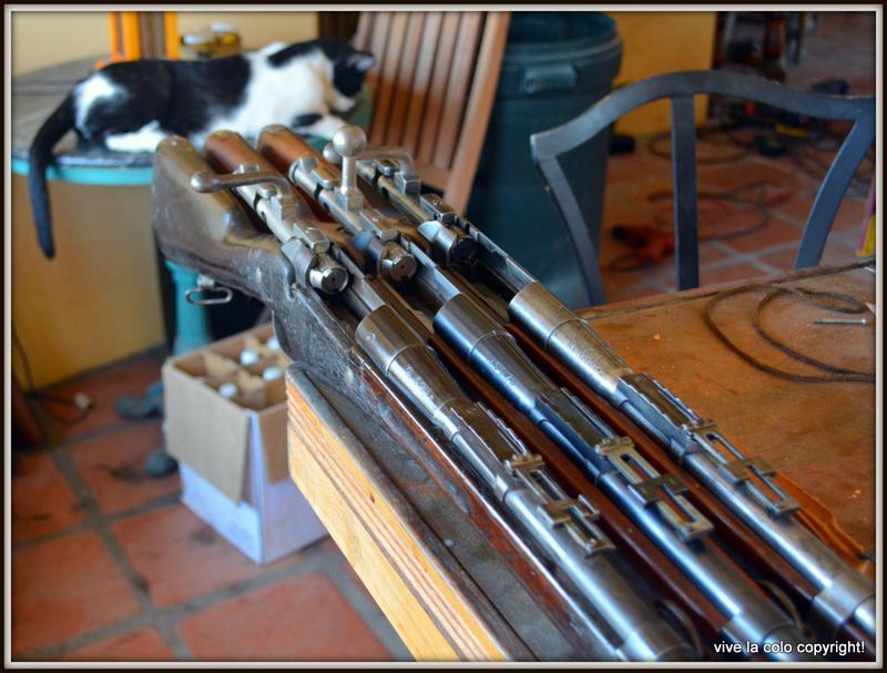 Une arme à rare boîtier St-Étienne 1907 Dsc_0423