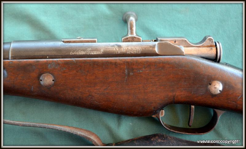 Carabine de Gendarmerie Mle 1890 Dsc_0740