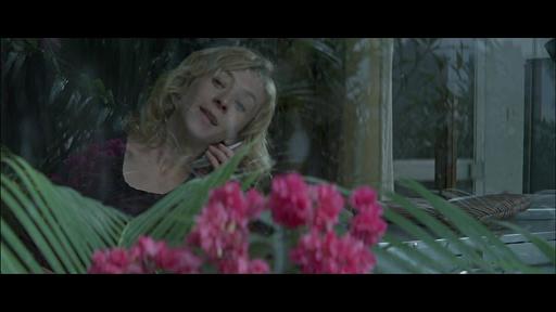 Vengeance ( 2009) Vlcsna10