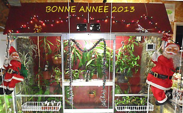 BONNE ANNEE 2013 Bonnes10
