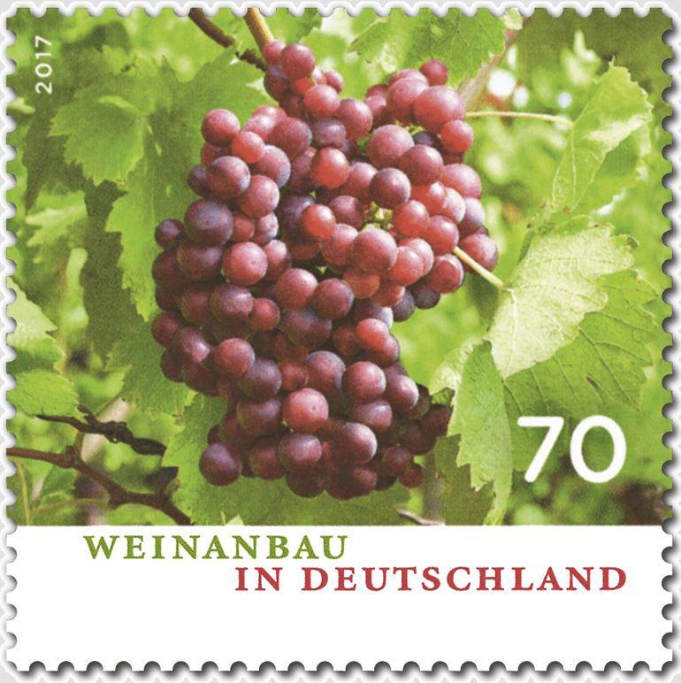 Ausgaben 2017 - Deutschland - Seite 2 Wein_m10