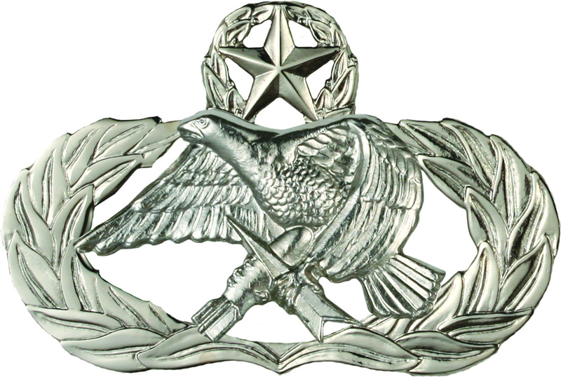 usaf bdu insignia Senior10