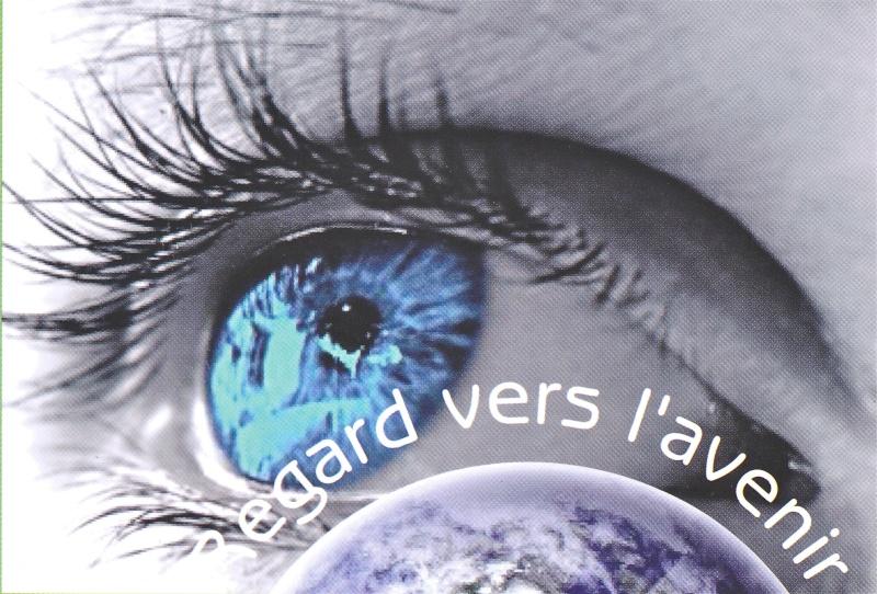 2013 l'année des bonnes résolutions Numeir12