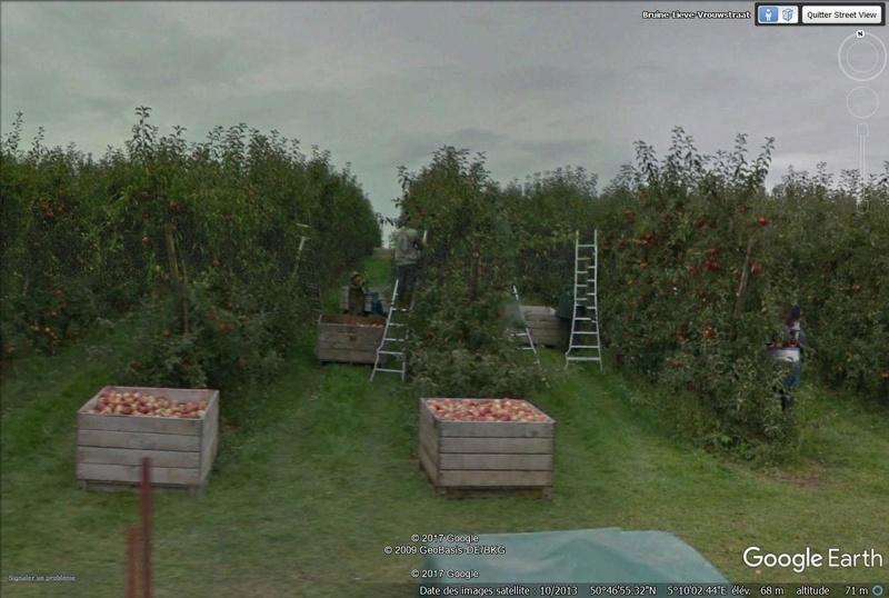 Le temps qui passe sur l'oeil de Street View... Pommes10