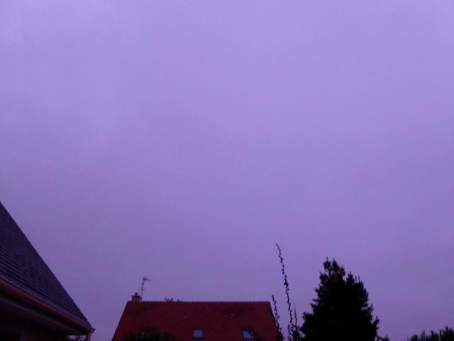 Le ciel va tomber sur notre tête ! (suite) P1050410