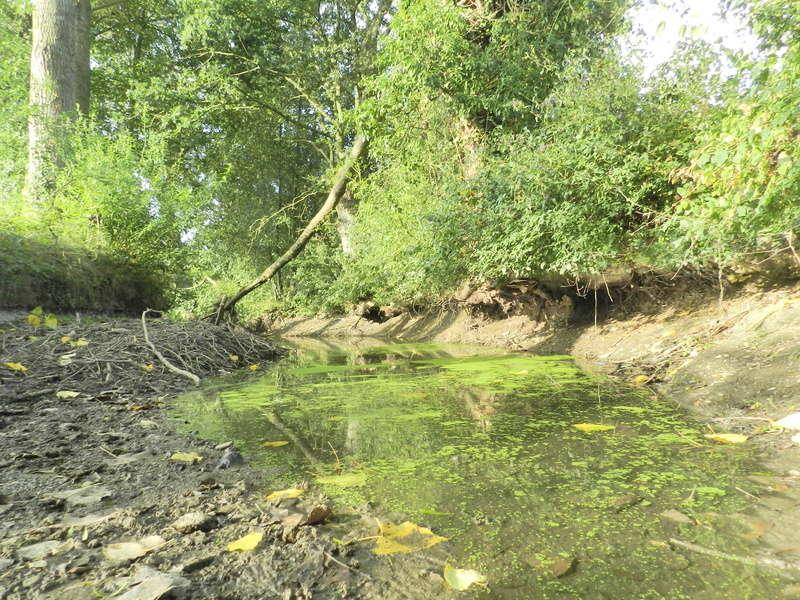 Dans l'Ouest la rivière est à sec (24/06/2017) Vauvyr25