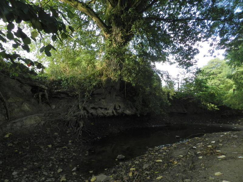 Dans l'Ouest la rivière est à sec (24/06/2017) Vauvyr29