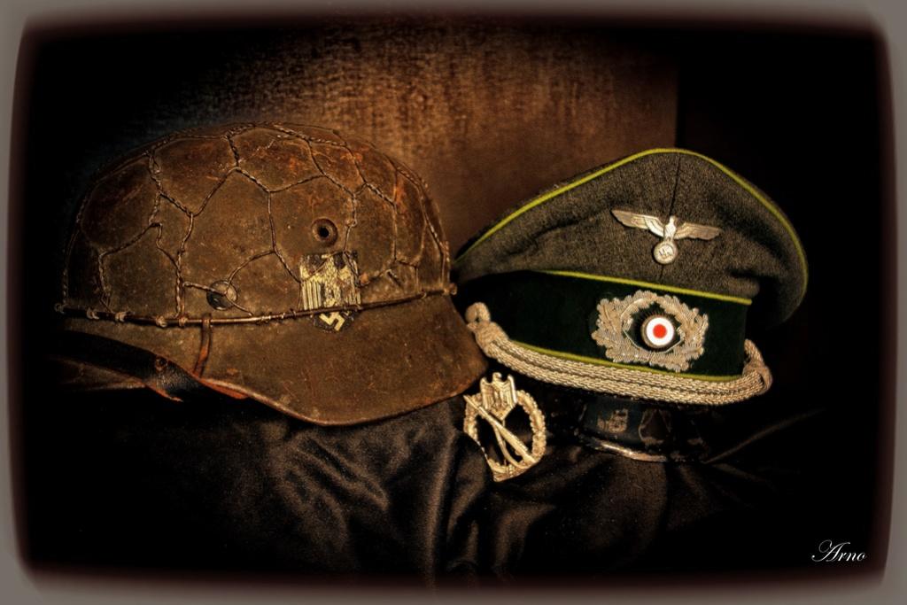 nature morte panzergrenadier Dsc03813