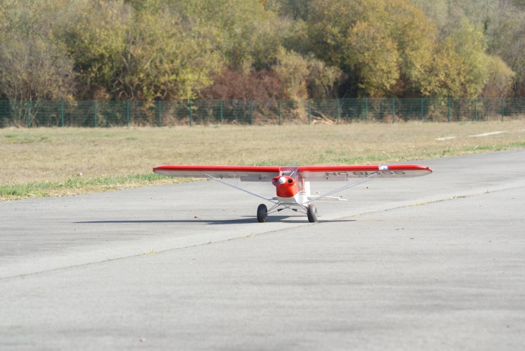 Teasing : Construction Piper PA18 ... - Page 38 Dsc01023