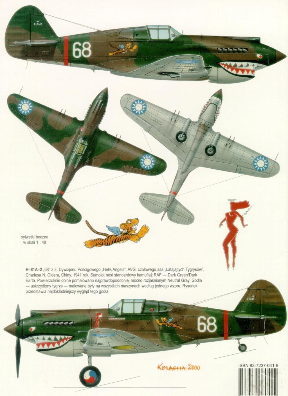 Flotte de warbirds silhouettes ! P40_6810
