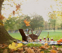 Şezători, picnicuri, serate, ateliere culturale, reuniuni prieteneşti.