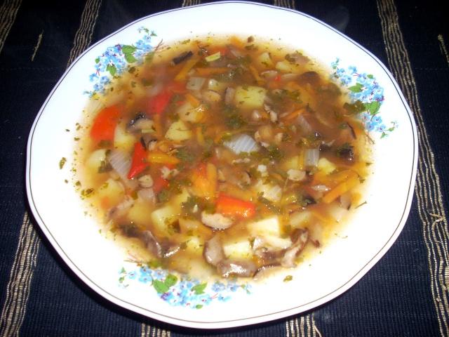 Ciorbe,supe, borsuri de legume si cu carne Fasole10