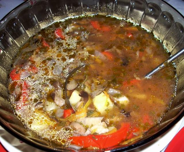 Ciorbe,supe, borsuri de legume si cu carne Fasole19