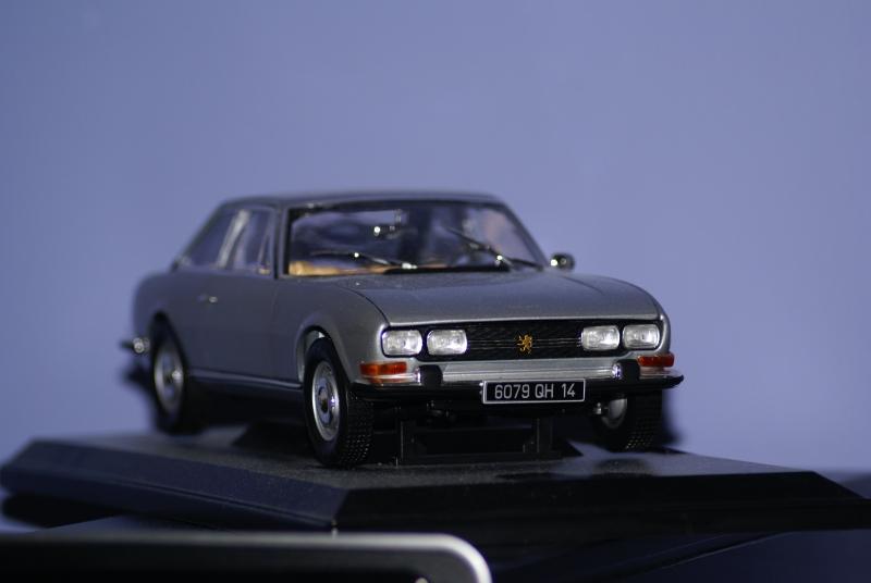 Mes miniatures Dsc06013