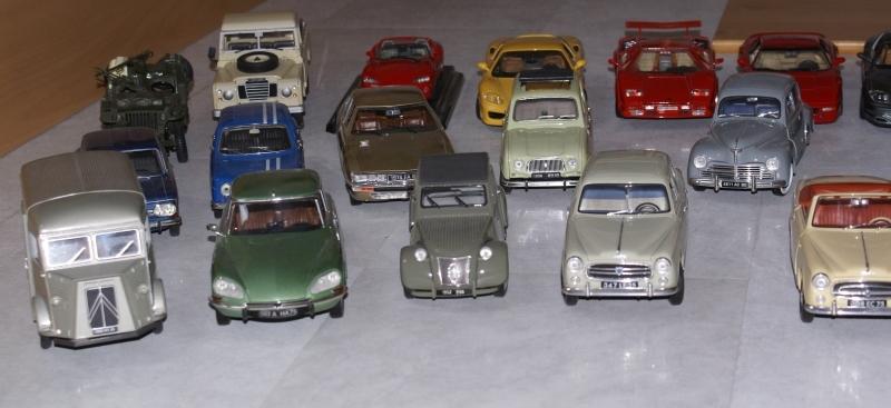 Mes miniatures Dsc06015