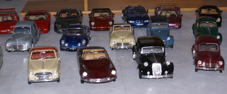 Mes miniatures Dsc06016